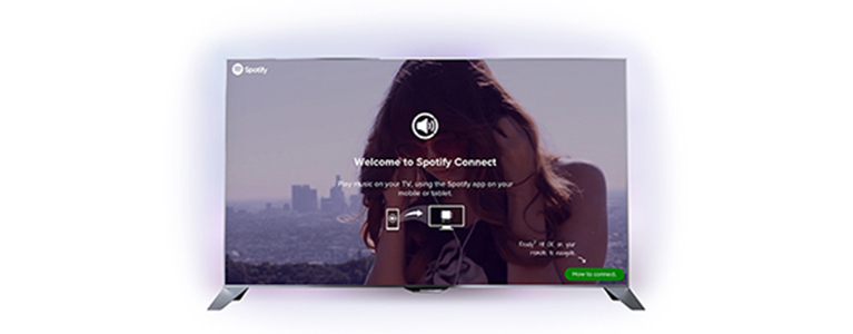 8109 Spotify Small2